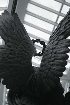 Angel Wings and Laurel Crown Shingeki No Bahamut, Angel Aesthetic, Black Angels, Black Wings, Visual Diary, Angels And Demons, Character Aesthetic, Aesthetic Themes, Angel Art