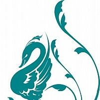 Illustration of swan decorated