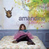 Album 2009 Amandine Bourgeois - 20 M²