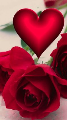 Beautiful Love Images, Beautiful Flowers Wallpapers, Beautiful Rose Flowers, Love Rose, Love Flowers, Bling Wallpaper, Flower Phone Wallpaper, Heart Wallpaper, I Love You Pictures