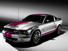 silver/pink Shelby GT 500 KR my dream car and that color is sweet!!!