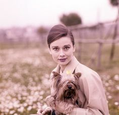 Audrey Hepburn and her dog Mr.Famous