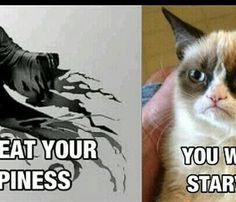 Who doesn't like references to Harry Potter and to Grumpy Cat? Anyone? Anyone?