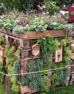 Insect hotel and herb garden in one of pallets built . Insect hotel and herb garden in one made of pallets Eco Garden, Dream Garden, Garden Art, Garden Design, Garden Planters, Garden Benches, Garden Types, Pallets Garden, Garden Hose