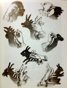 Shadow/Puppets by JoshSemans, via Flickr