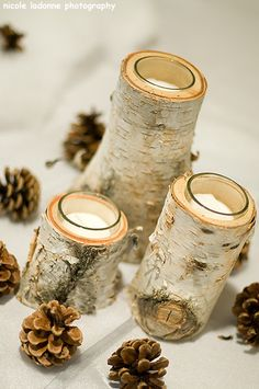 hallowed out birch centerpieces