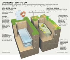 Green burial; graphic credit: Nathan Butler of  Indiana Green Burial