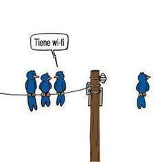 wifi   #meme