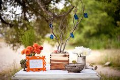 wish-tree-wedding-guest-book-alternatives-ideas.jpg (JPEG kép, 650 × 433 képpont)
