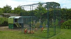 Give your chickens more space while keeping them safe with a Walk in Chicken Run from Omlet. New and improved, this range of Walk in Runs look great whilst blending…