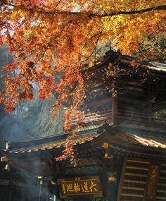https://flic.kr/p/8WKSMZ   MIZUSAWA TEMPLE   no rules, no limitations, no boundaries it's like an art™ © All Rights Reserved by   Mizusawa Temple   is devoted to Kannon, the goddess of compassion in Japanese Buddhism. An 11-faced, thousand-handed statue of the deity is the temple's main object of worship, and is never displayed publicly.   On the temple grounds, there are many interesting ceremonial procedures in which visitors can take part