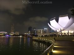 Promenade near hotel Marina Bay Sands in Singapore #Singapore #marinabaysands  #gardensbythebay #vacation #visiting #trip #travel #tourism #travelblog #mysecretlocation #charming #destination #amazing #flower #beautiful #wonderful #getaway  #smiles #greattime #luxwt #explorenewplaces #travelhappymoments #traveladdict #summer #Asia #garden #lights #magic #tree #beautifuldestinations
