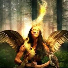 When a man moves away from nature, his heart becomes hard.    ~ Lakota Prayer