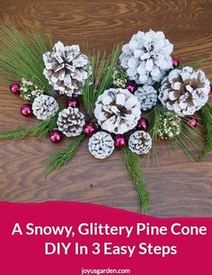White pine cones are great to use for Christmas decorating. Here's a snowy, glittery pine cone DIY in 3 easy steps. See different looks you can get with painting techniques & different crystal glitters . You'll find links to the materials used & as well as a video to guide you.