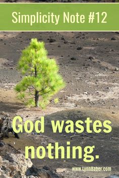 Simplicity Note #12 – God Wastes Nothing   Lynn Baber