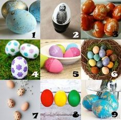 link-love-eggs.jpg