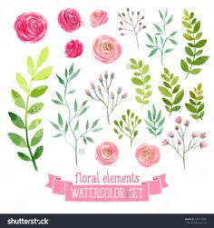 fb6200c91b29f Vector floral set. Colorful floral collection with leaves and flowers