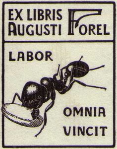 """""""Work overcomes everything""""  August Forel (1848-1931) is regarded as the Father of Swiss Psychiatry.  He named his home """"the ant colony"""""""