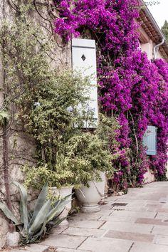 Vagabondages dans le Golfe de St Tropez... | The Flying Dutchwoman