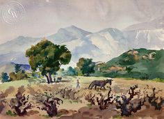 View of the Grape Vineyards, 1944
