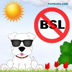 SAY NO TO B.S. L  BREED SPECIFIC LEGISLATION