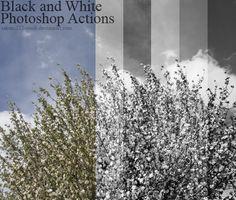 acciones blanco y negro photoshop  + (4)