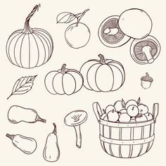 Autumn Illustrations Fall Harvest Line Drawings Clipart PNG Pumpkin Leaves Foliage Apple Picking DIY Thanksgiving Linework Fall Drawings, Halloween Drawings, Thanksgiving Drawings, Diy Thanksgiving, Art Mini Toile, Drawing Apple, Apple Illustration, Easy Doodle Art, Drawing Clipart