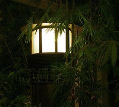 Lantern and Bamboo, University of Michigan, Cardiovascular Center Atrium
