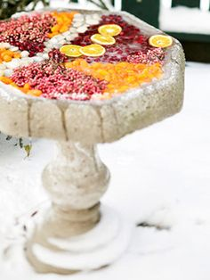 Christmas/ winter decor...birdbath filled with fruit & berries for the birds!