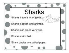 Shark Crafts and Activities for a Preschool Ocean Theme
