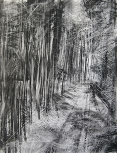 'Cropton Forest II', Janine Baldwin, charcoal, graphite & pastel on paper, 90 x 70cm. Shortlisted for The Haworth Prize at the New English Art Club Annual Exhibition 2015, Mall Galleries, London www.mallgalleries.org.uk/about-us/blog/new-english-art-club-prizes-awards www.janinebaldwin.com