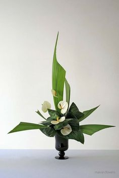 Contemporary Flower Arrangements, Creative Flower Arrangements, Tropical Floral Arrangements, Small Flower Arrangements, Ikebana Flower Arrangement, Ikebana Arrangements, Flower Vases, Flower Art, Calla Lily Centerpieces