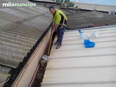 . Mantenimiento de todo tipo de cubiertas canales limpieza y sellamiento de canalones eliminaci�n de goteras policarbonatos panel samwilh  servicio 24 horas por robos