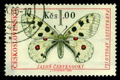 Vintage postage stamp. Butterfly 2 – Stock Editorial Photo © Blulake #