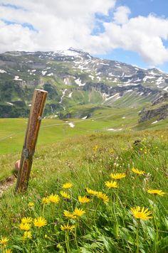Grossglockner panorámaút, Ausztria Salzburg, Mountains, Nature, Travel, Naturaleza, Viajes, Destinations, Traveling, Trips