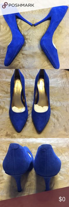 🍁Shoes by BCBGeneration🍁 Beautiful 4 inch royal blue shoes with 1/2 inch platform, excellent condition, pointed toe, by BCBGeneration. BCBGeneration Shoes Heels
