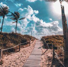 South Beach, Miami by - Bree Killion - Nature travel Wallpaper Travel, Tree Wallpaper Iphone, Beach Wallpaper, New Wallpaper, Wallpaper Backgrounds, Wallpaper Stairs, Drawing Wallpaper, Scenery Wallpaper, Summer Wallpaper