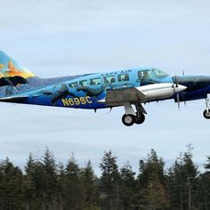 #TBT 2007: #CapeAir and #IFAW used this beautiful #airplane to deliver 50 children's drawings of #humpbackwhales to government officials across the country, just in time for the International Whaling Commission #IWC in Anchorage, #Alaska. Wouldn't you like a ride in this beauty? | https://instagram.com/ifawhq
