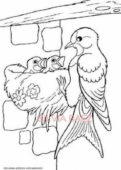 Bird Coloring Pages, Coloring Sheets For Kids, Coloring Pages For Kids, Coloring Books, Bird Drawings, Colorful Drawings, Easy Drawings, Drawing For Kids, Art For Kids