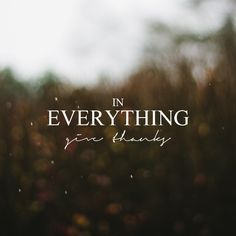 In Everything Give Thanks : Hannah Rose Beasley