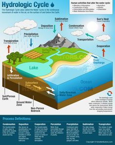 The water cycle summary, usgs water science school inside water cycle dia. 6th Grade Science, Middle School Science, Elementary Science, Science Classroom, Teaching Science, Science Education, Science Activities, Weather Activities, Forensic Science