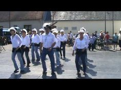 WILD STALLION line dance - YouTube