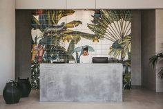 Wall / Tiles / Nature / Concrete Desk / Tropical