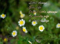 Of little things :