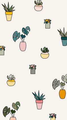May Flowers a daily drawing challenge Potted plants monstera leaf succulents aloe pottery illustration iPad Pro Procreate iPhone background wallpaper pattern Succulents Wallpaper, Plant Wallpaper, Flower Wallpaper, Ipad Background, Iphone Background Wallpaper, Aesthetic Iphone Wallpaper, Background Patterns Iphone, Cute Ipad Wallpaper, Vector Background