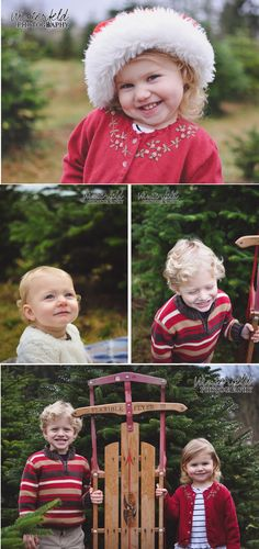 It's the most wonderful time of the year  | Winterfeld Photography | Covington, wa Photographer