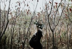Maternity Photos and 39 Week Pregnancy Update. — Britt Havens