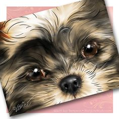 Shih Tzu Puppy Art Cards - paint portraits of The Girlz like this.