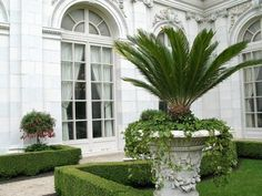 Manicured, green, and white elegance in the garden.