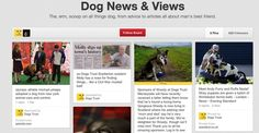 10 charities and how they use Pinterest | Econsultancy